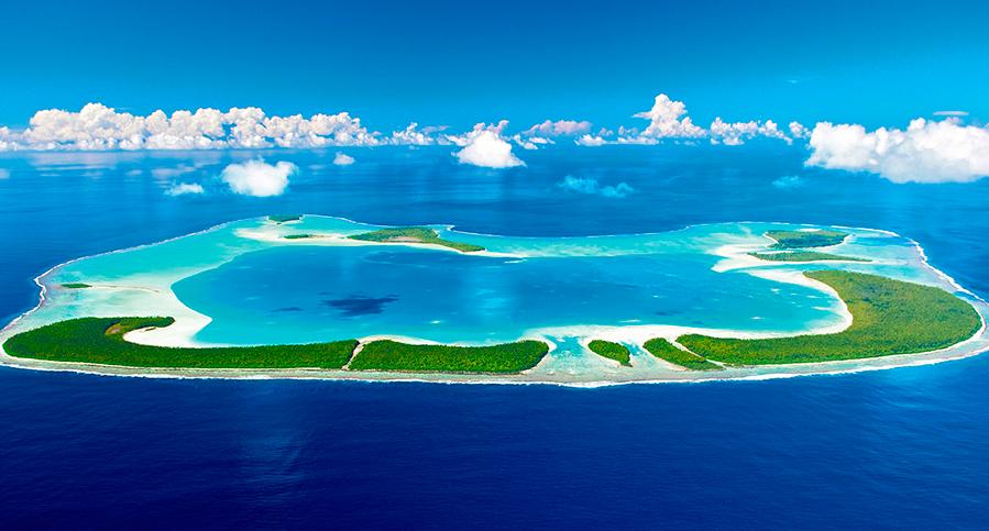 цветущие островки
