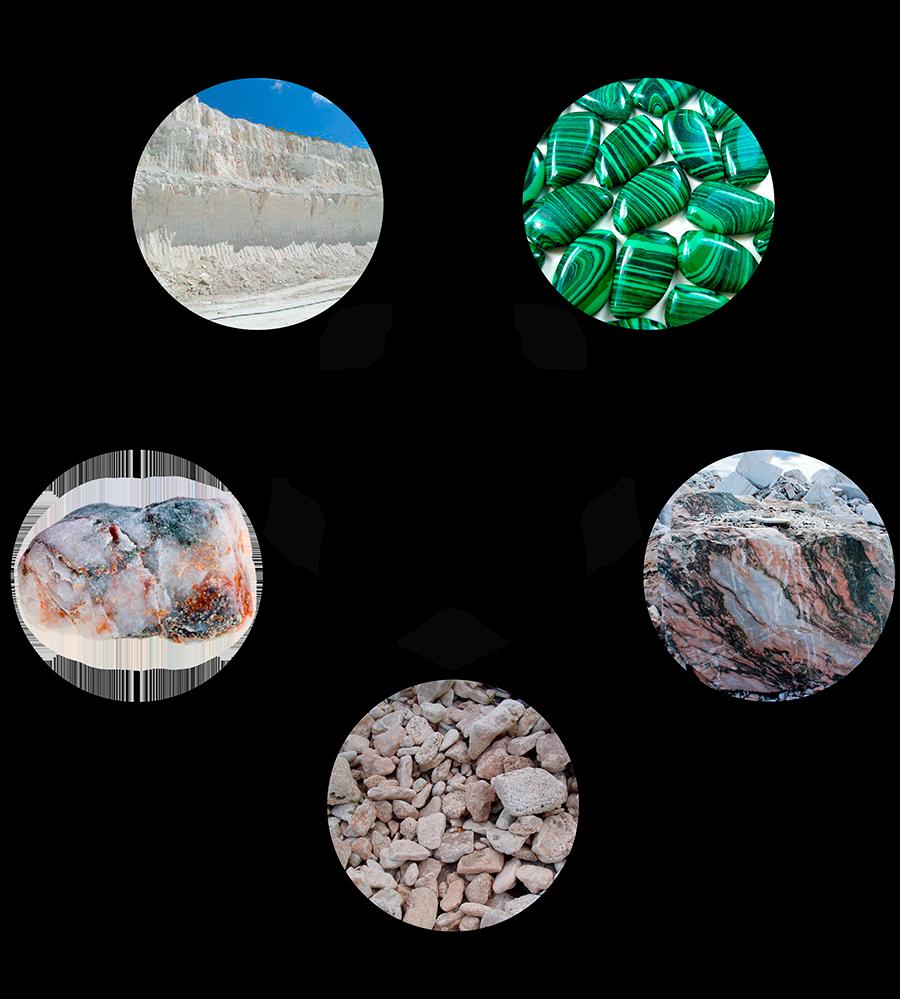 Углерод содержится в каждой клетке растений и животных
